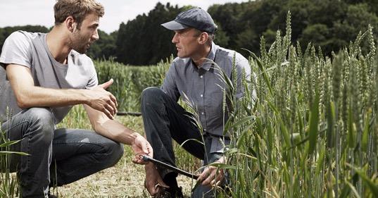 Atfarm est développé en étroite collaboration avec les agriculteurs